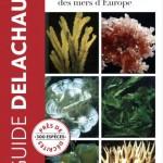Guide des algues des mers d'Europe